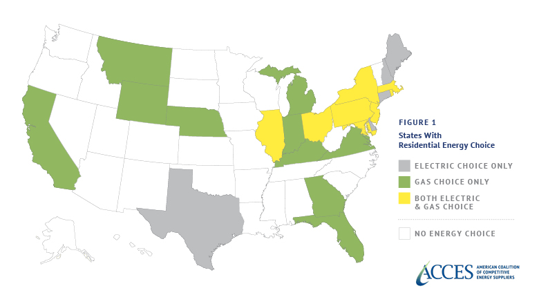 The Power of Choice: Consumer Preferences on Energy Choice in Florida and Ohio